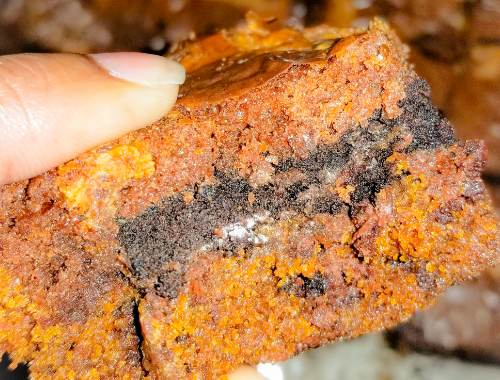 A piece of the Peanut Butter Triple Brownie